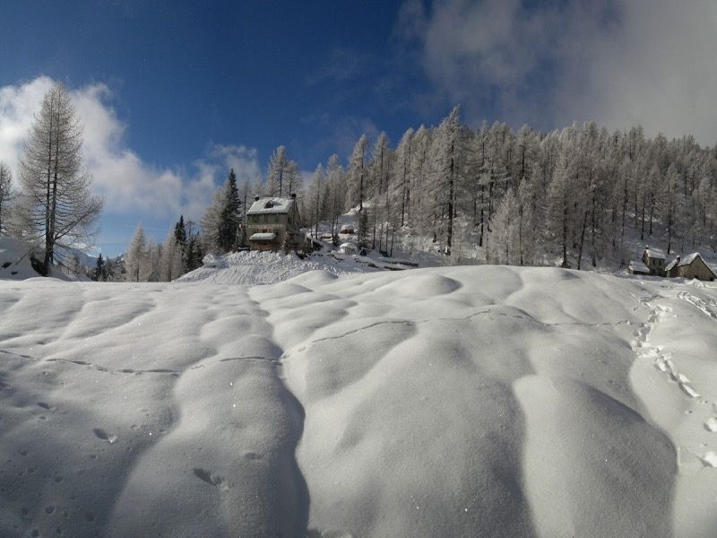 Ciaspolata alpe Solcio rif. Crosta val Divedro