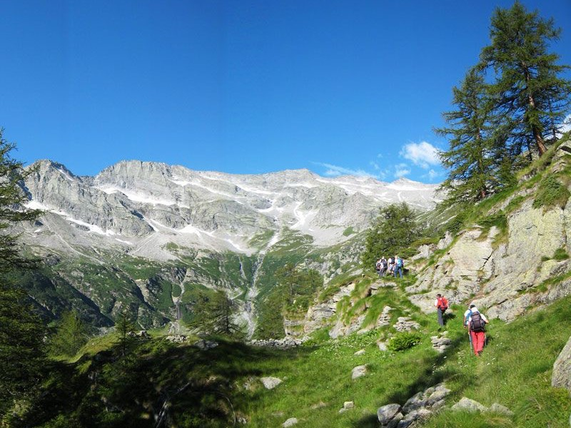 Escursione guidata strada Antronesca e stambecchi del Cingino