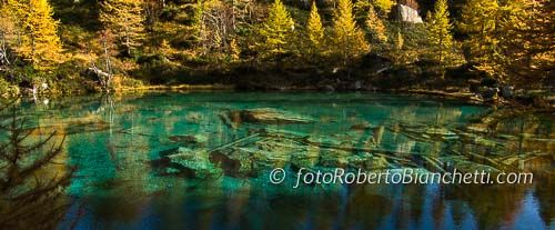 Escursione fotografica nel Parco Naturale Alpe Devero