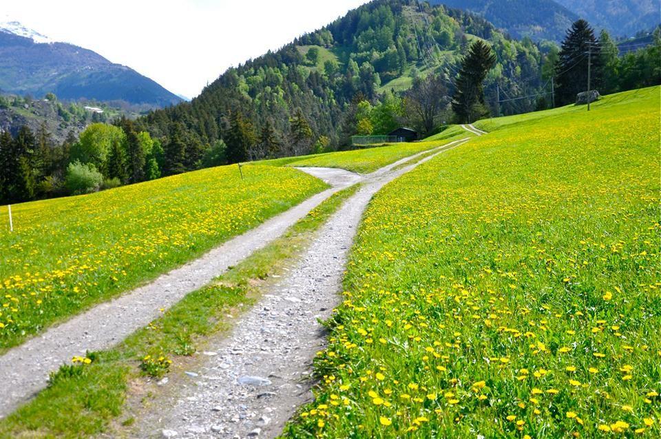 Da Grengiols a Mühlebach, nella Valle di Goms