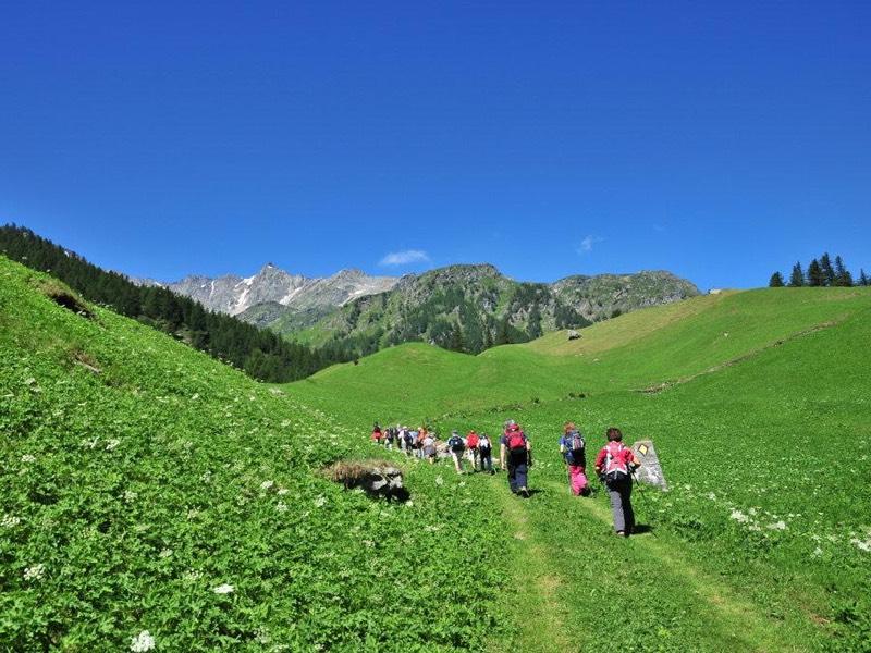Escursione guidata Zwischbergental, per gruppi e privati