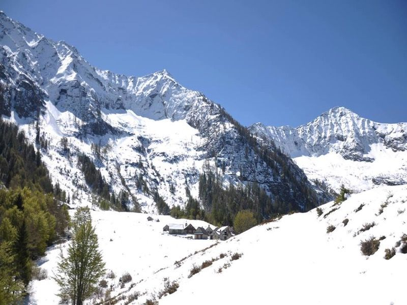 Ciaspolata alpe Campra valle Vigezzo