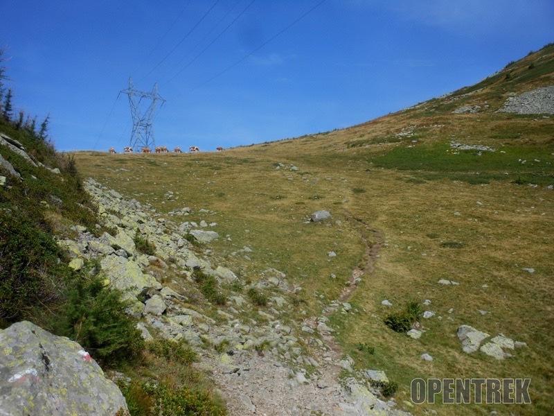 Escursione passo del Monscera valle Bognanco